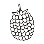 Raspberry - Easy coloring fruits