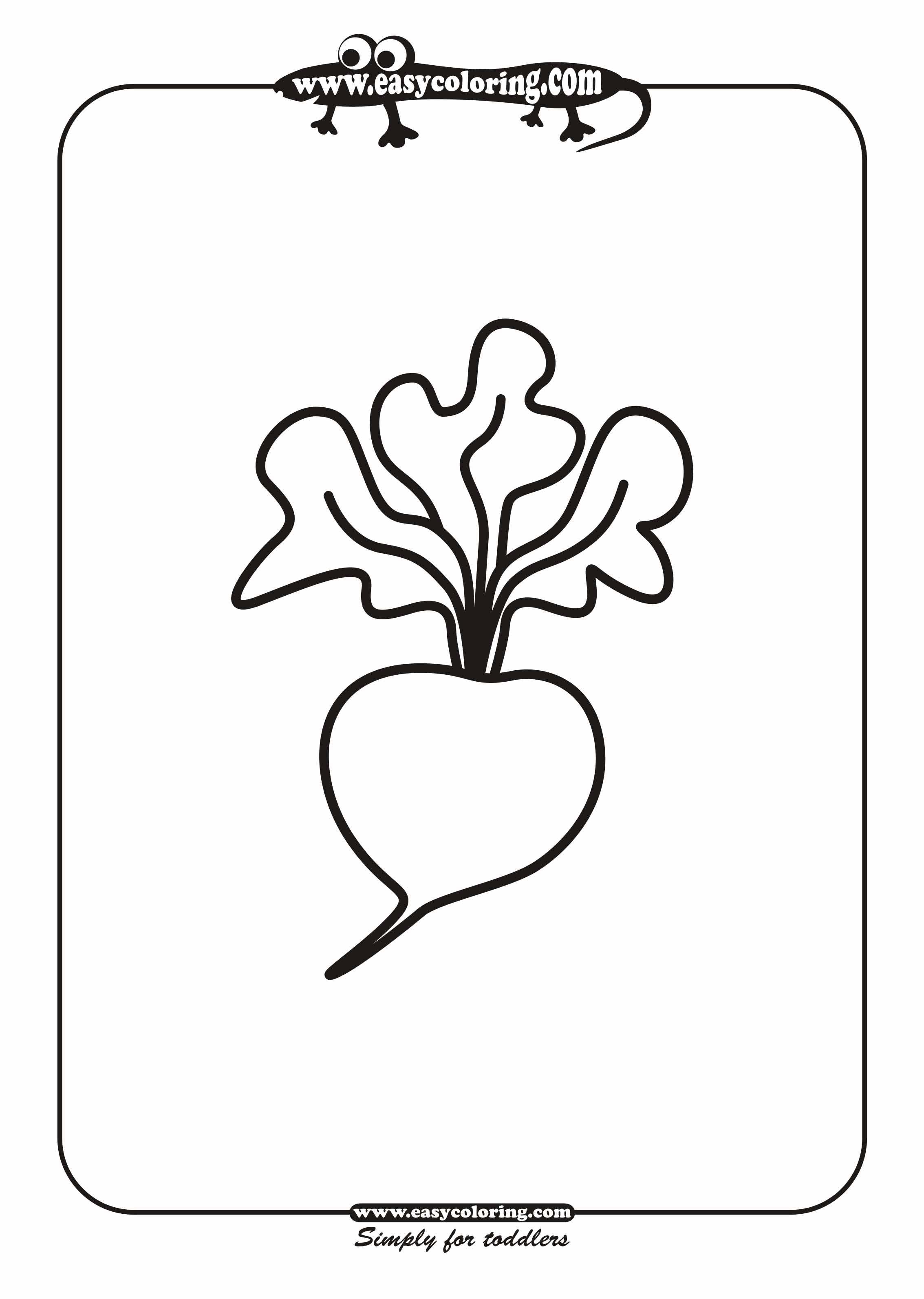 Radish Simple vegetables Easy